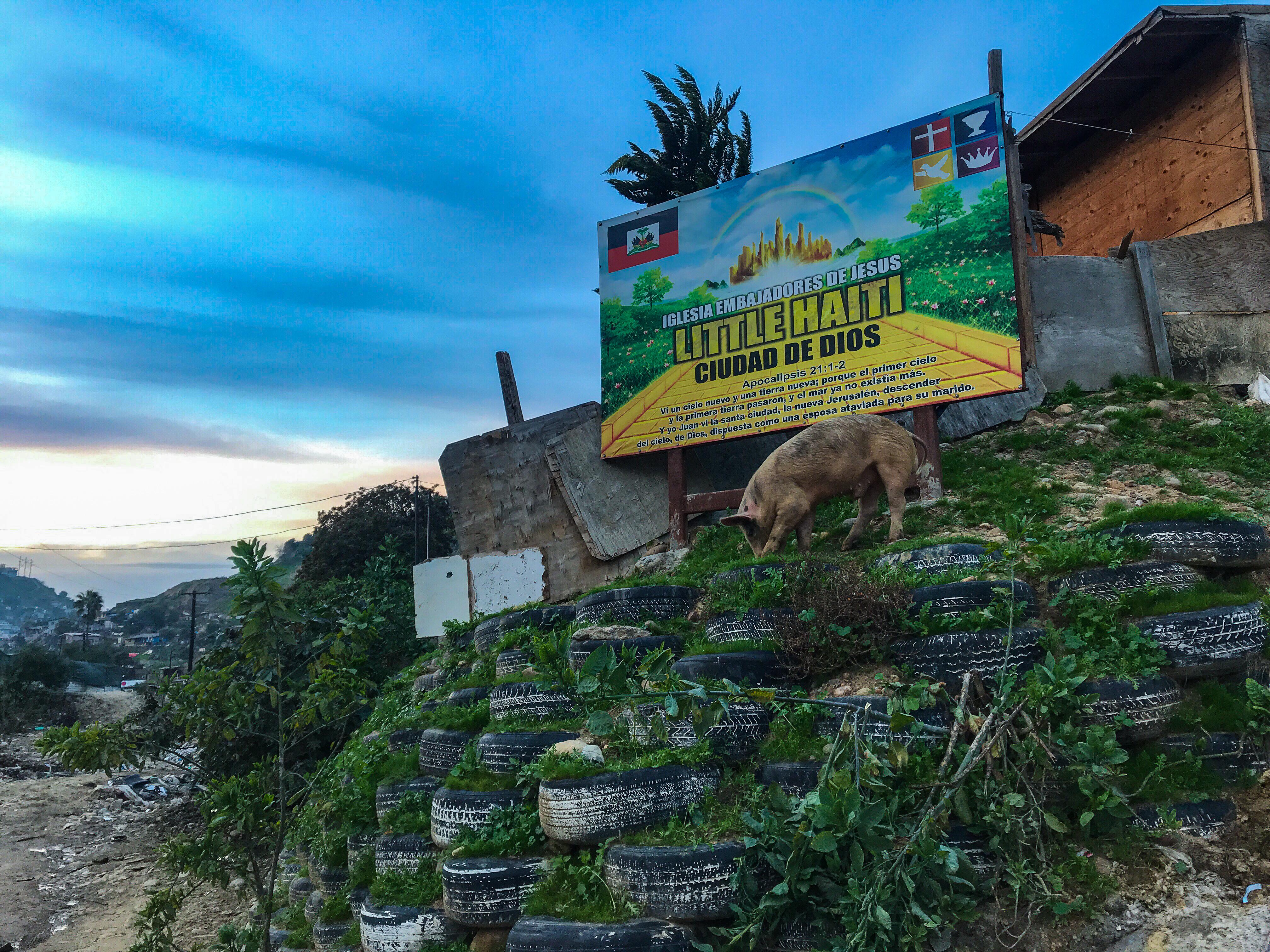 La Pequeña Haití. Fotografía por Flor Cervantes.
