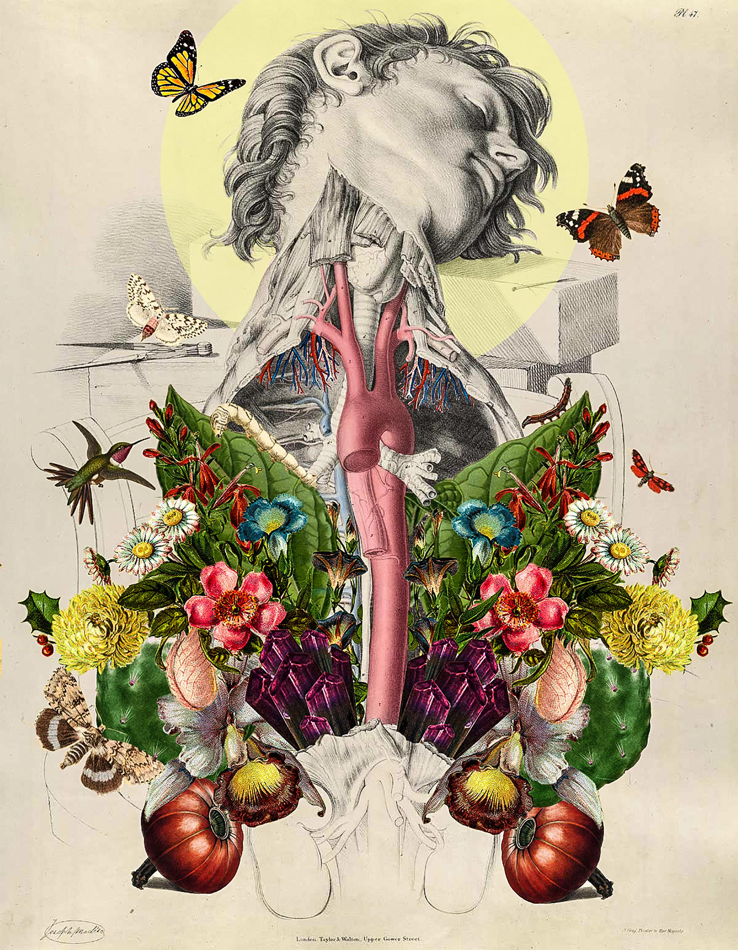 Collage de Miranda Guerrero Araiza