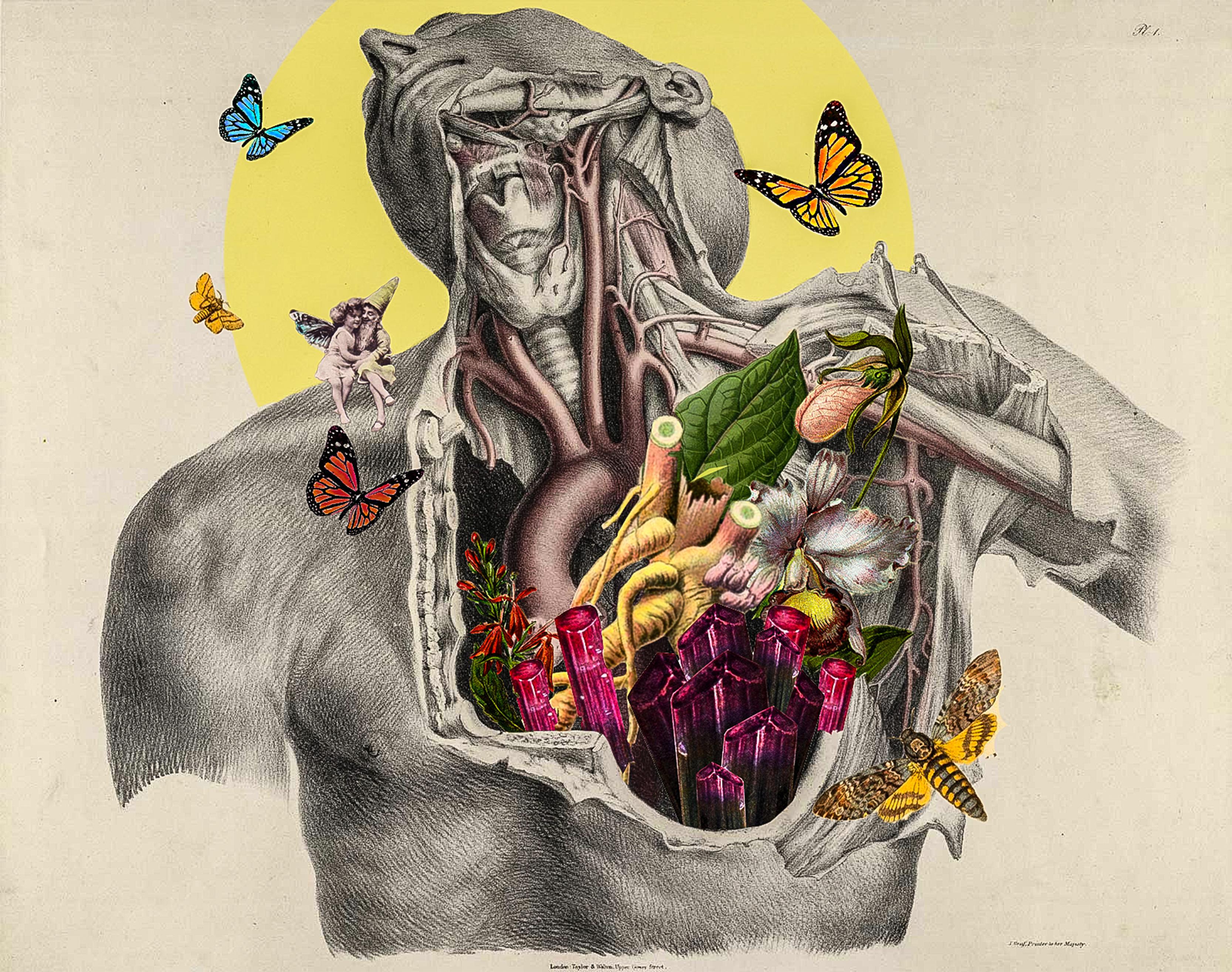 Ilustración por Miranda Guerrero