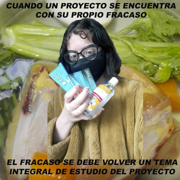 Daniela de la Torre, Cuando un proyecto se encuentra con su propio fracaso..., 2020