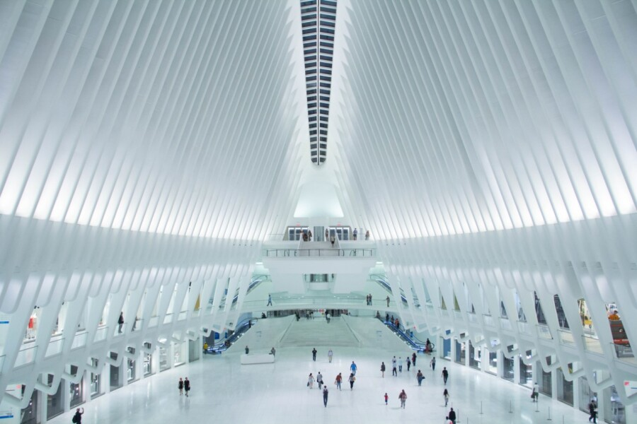 The oculus. Wikimedia Commons